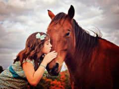 лошадь, devochka, оптом