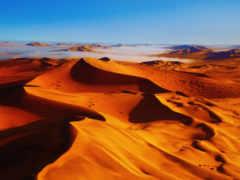 trap, lut, пустыня