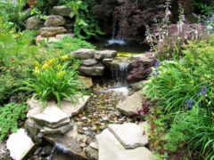 garden, камни