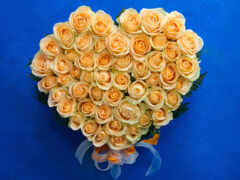 цветы, yellow, оранжевый