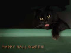 halloween, хеллоуин, desktop