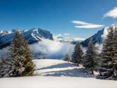 coin, снег, гора