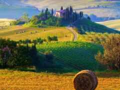 tuscany, стог, поле