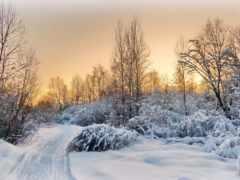winter, закат, neve