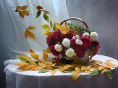 cvety, осенние, натюрморт