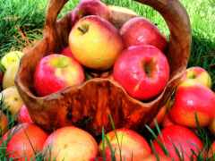 яблоки, еда, плод