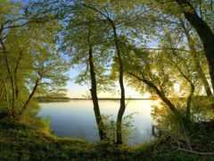 озеро, малиновый, закат
