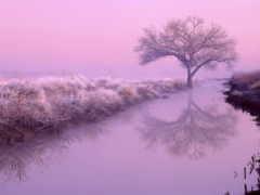 рассвет, река, ночь