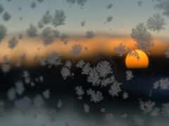 снег, закат, winter