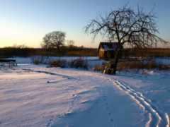 traces, winter, снег