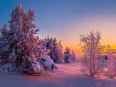 рассвет, winter, озеро