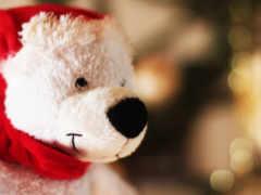 медведь, картинка, toy