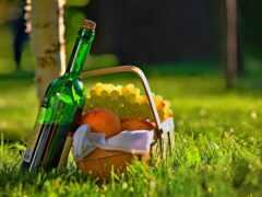 пикник, meal, вино