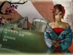 niki, warplane, world