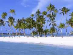 indian, ocean, остров