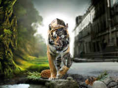 киборг, тигр, природа