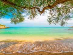 пляж, pazlyi, landscape