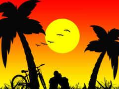 силуэт, романтика, palm