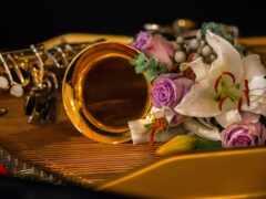 музыка, цветы, instrument