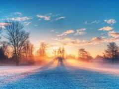 winter, scenery, snowy
