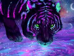 тигр, animal, коллекция