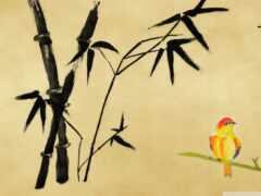 минимализм, бамбук, живопись
