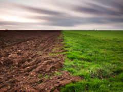 land, земли, почвы