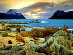 paisajes, costa, del