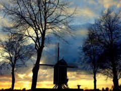 mill, serenity, trees