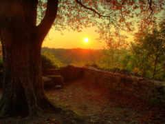 закат, красивые, качественные