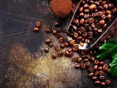 seed, coffee, кафе