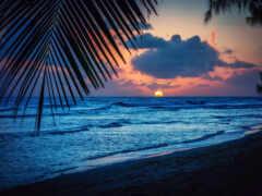 море, красивый, landscape