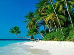 пляжи, райские, фотографиях