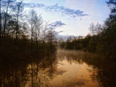 природа, вечер, река Фон № 98583 разрешение 1920x1200