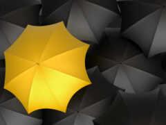 зонтик, купить, фотообои