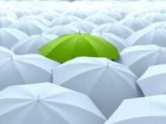 зонтик, зелёный, white