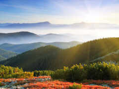 природа, утро, рассвет