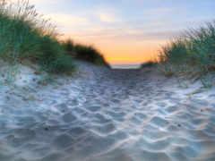 море, песок, трава