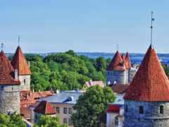 крыша, таллин, эстония