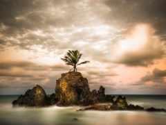 пляж, earth, вика