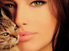 девушка, кот, кошки