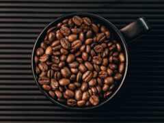 coffee, cup, bean