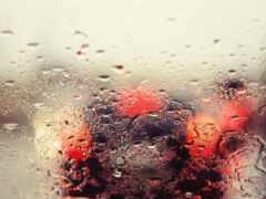 дождь, drop, glass
