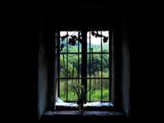 окно, black