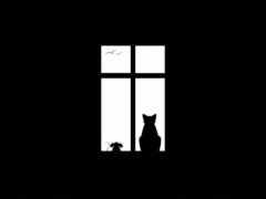 кот, black, холсте