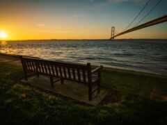 скамейка, outdoor, amazon