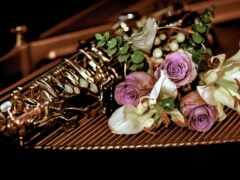 trumpet, еще, life