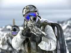 тюлень, вмф, marine
