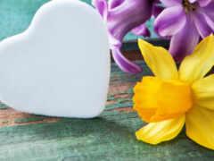 fond, сердце, весна