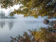 природа, озеро, красивый